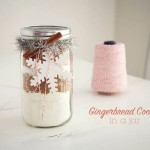 DIY Gift Guide: Gingerbread in a Jar