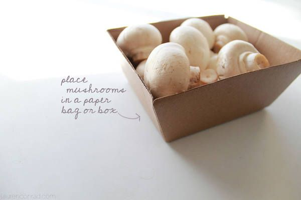 Mushrooms should never be stored in plastic. Instead, place them into a brown paper bag or a cardboard box