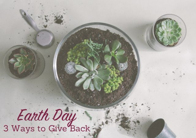 Eco Chic: 3 Ways to Give Back This Earth Day