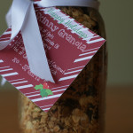 DIY Gift Guide: Homemade Skinny Granola