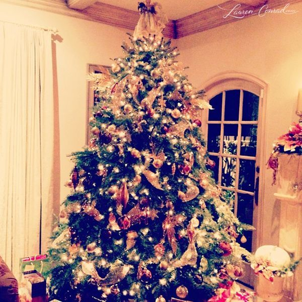 Photo Diary: A Merry Christmas and a Happy New Year