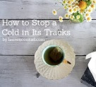 Immunity Boost: How to Stop a Cold In Its Tracks
