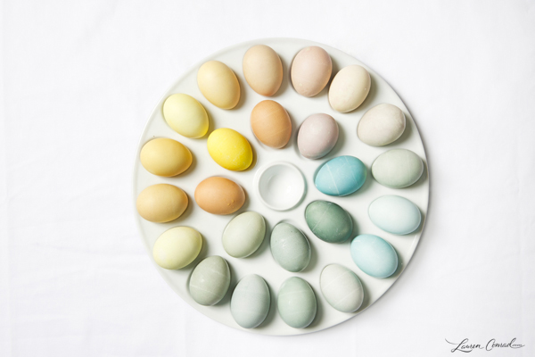 DIY: Naturally Dyed Easter Eggs