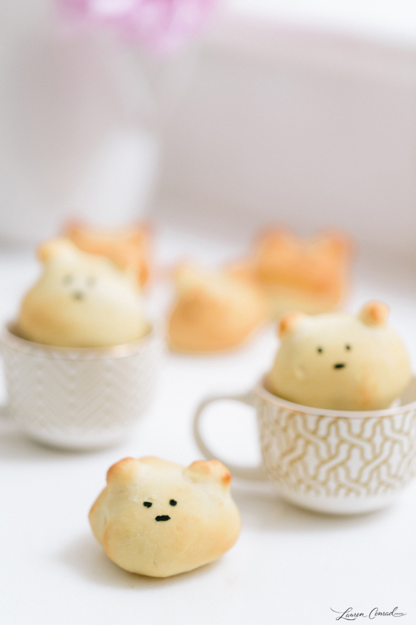 Edible Obsession: Little Bear Buns