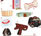 Holiday Gift Guide: For Your Pets