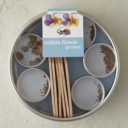 Terrain Edible Flower Garden Kit