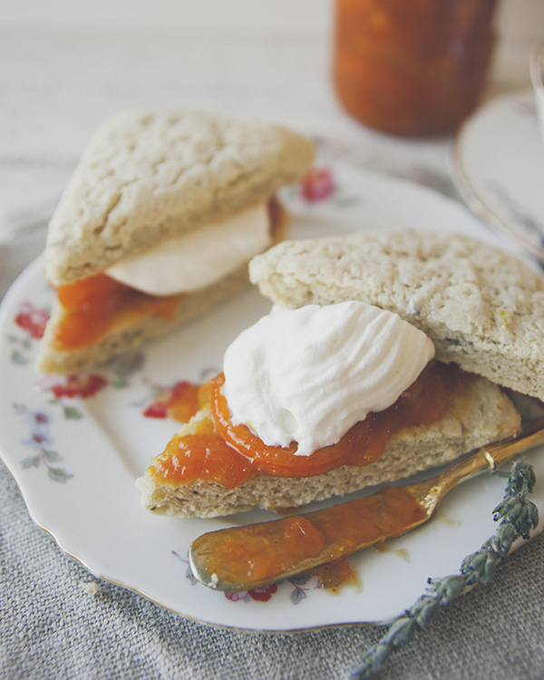 Fall scones perfect for a cozy morning in.