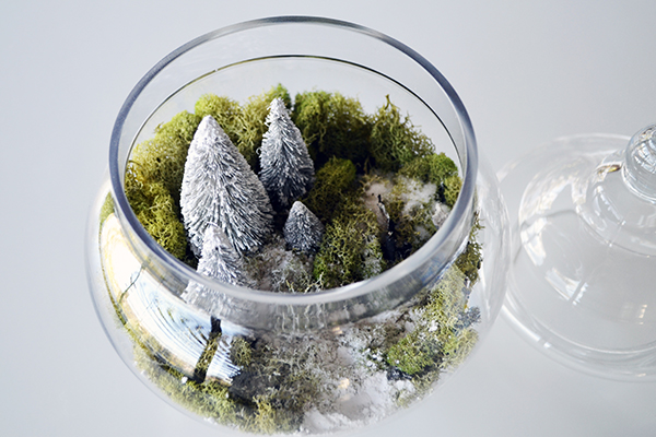 A pretty little DIY winter terrarium by LaurenConrad.com