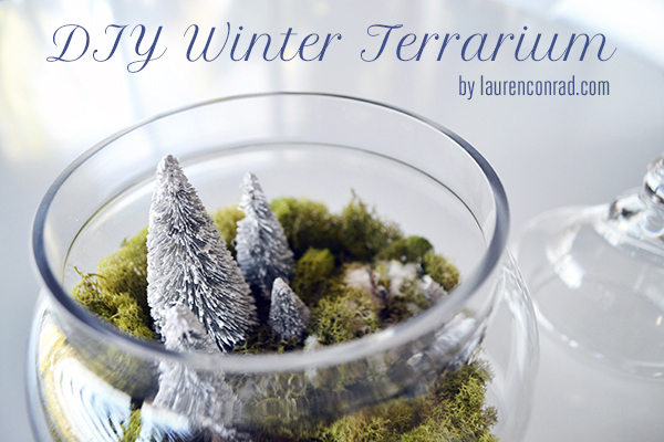 DIY Winter Terrariums by LaurenConrad.com