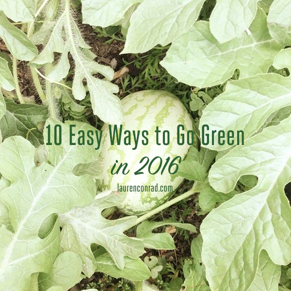 How to Go Green in 2016