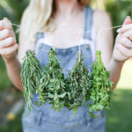 Odds & Ends: How to Dry Your Own Herbs