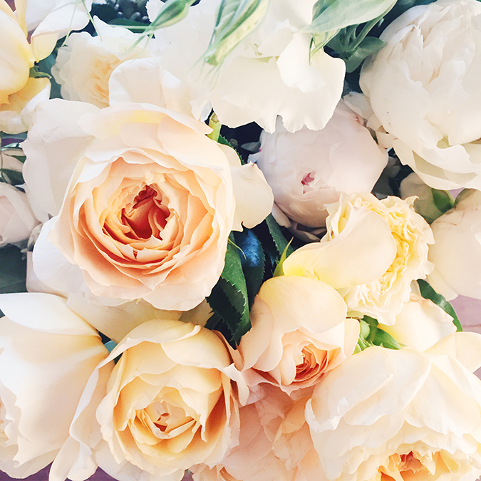 pretty blooms from the Paper Crown shoot