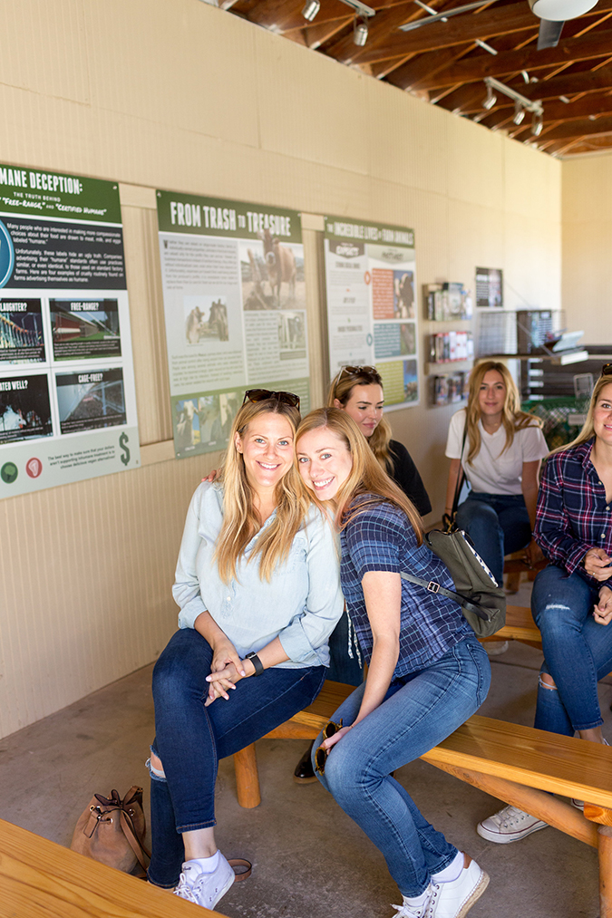 See Team LC's trip to Farm Sanctuary