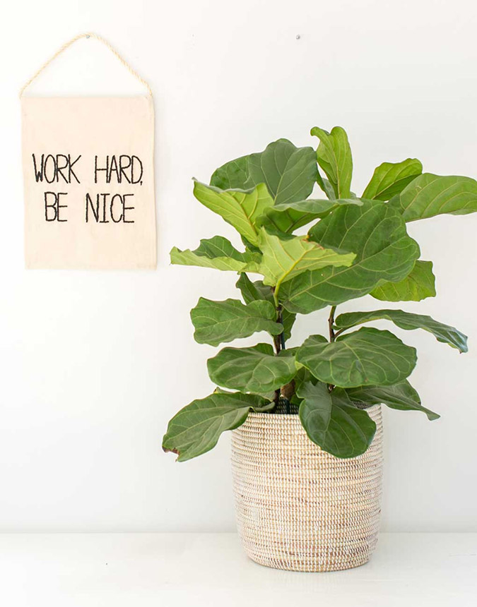 Work Hard, Be Nice wall hanging