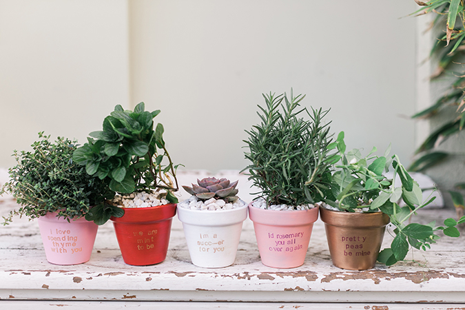 DIY punny potted plants for your Valentine