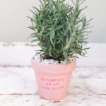 Cupid's Corner: DIY Potted Plant Valentines