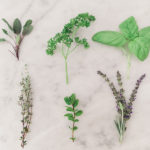 Green Thumb: How to Start an Herb Garden