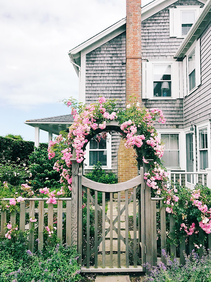 bloom-covered arches in Nantucket