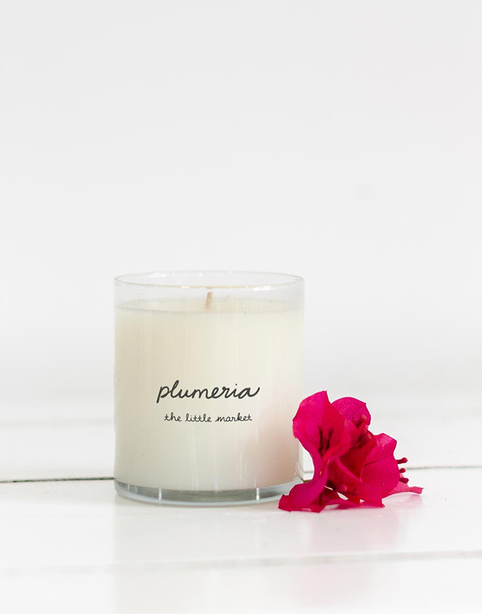 plumeria candle from the little market