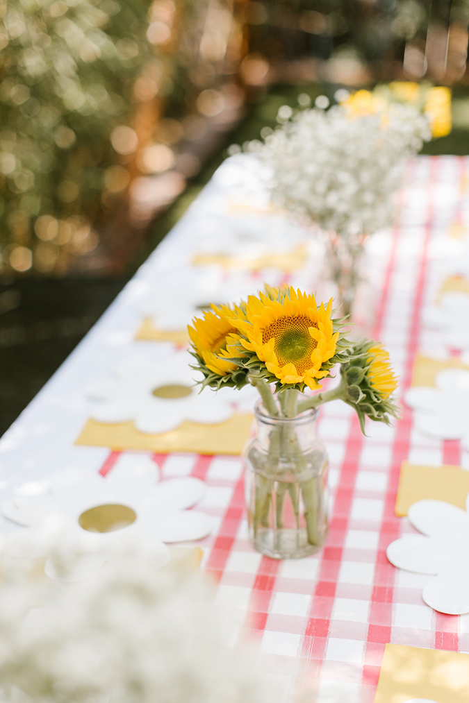 chicken themed birthday party via laurenconrad.com