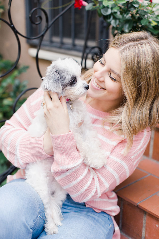 LC Lauren Conrad Neutrals and Dog