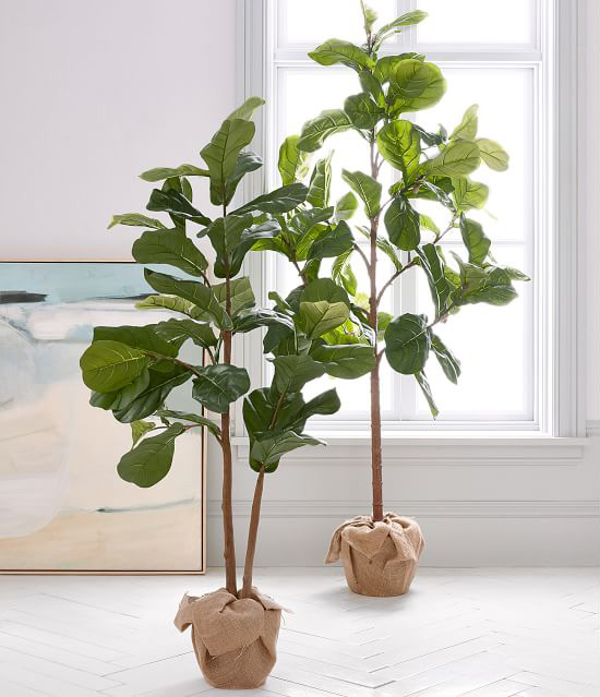pottery barn faux potted fiddle leaf fig tree