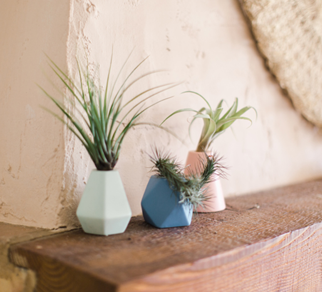 3 Ways to Style My New Bud Vases