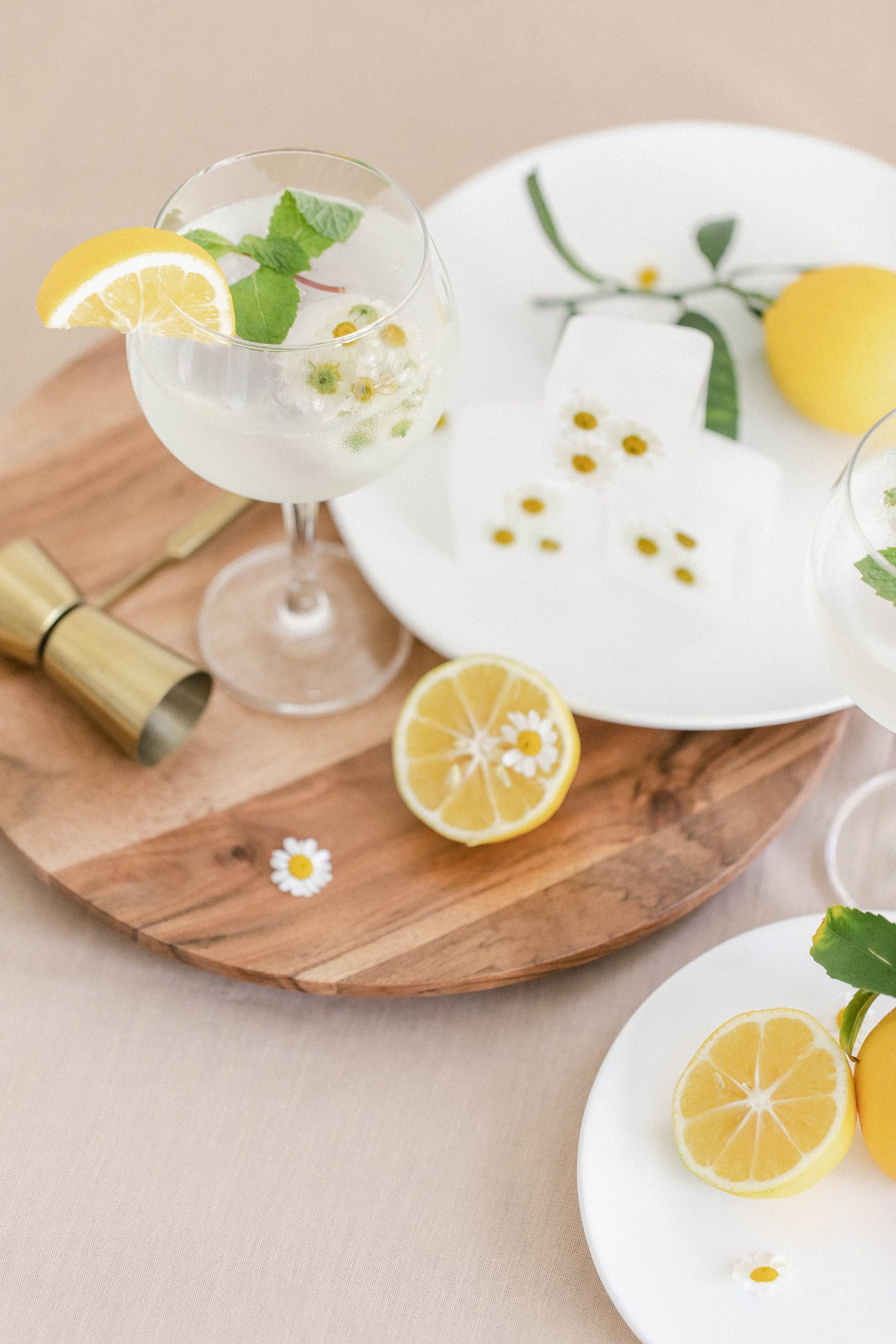 Fresh Lemon and Mint Gin and Tonics With Chamomile Ice Cubes