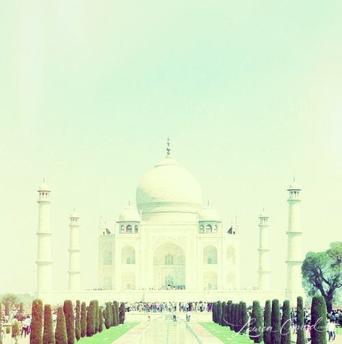 Photo Diary: My Adventures in India